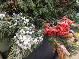 Winter Planters and Wreaths!