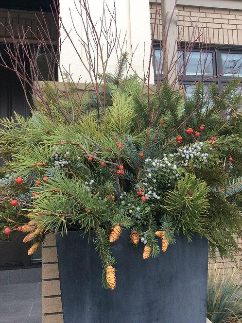 Winter Pots-only Nov/Dec