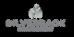 thumbnail_Silverback_Management_Logo.png