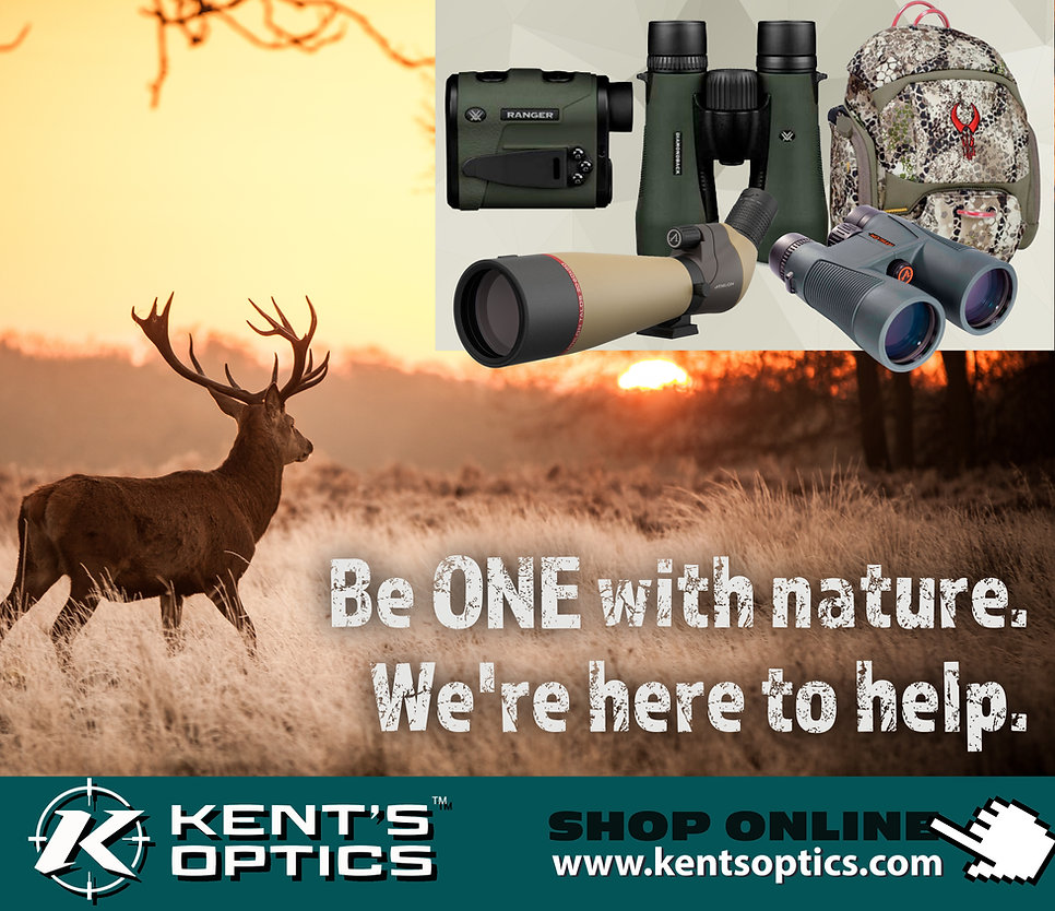 Kents Optics rebrand 5.jpg