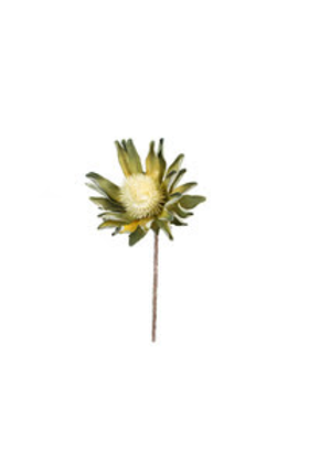 Faux Green Proteas - Set of 2