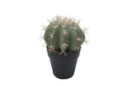 Faux Coryphantha Cactus