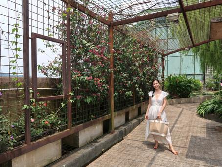 Discover: Secret Garden @ 1 Utama Shopping Centre
