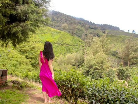 Travel Journal: Ipoh & Cameron Highlands