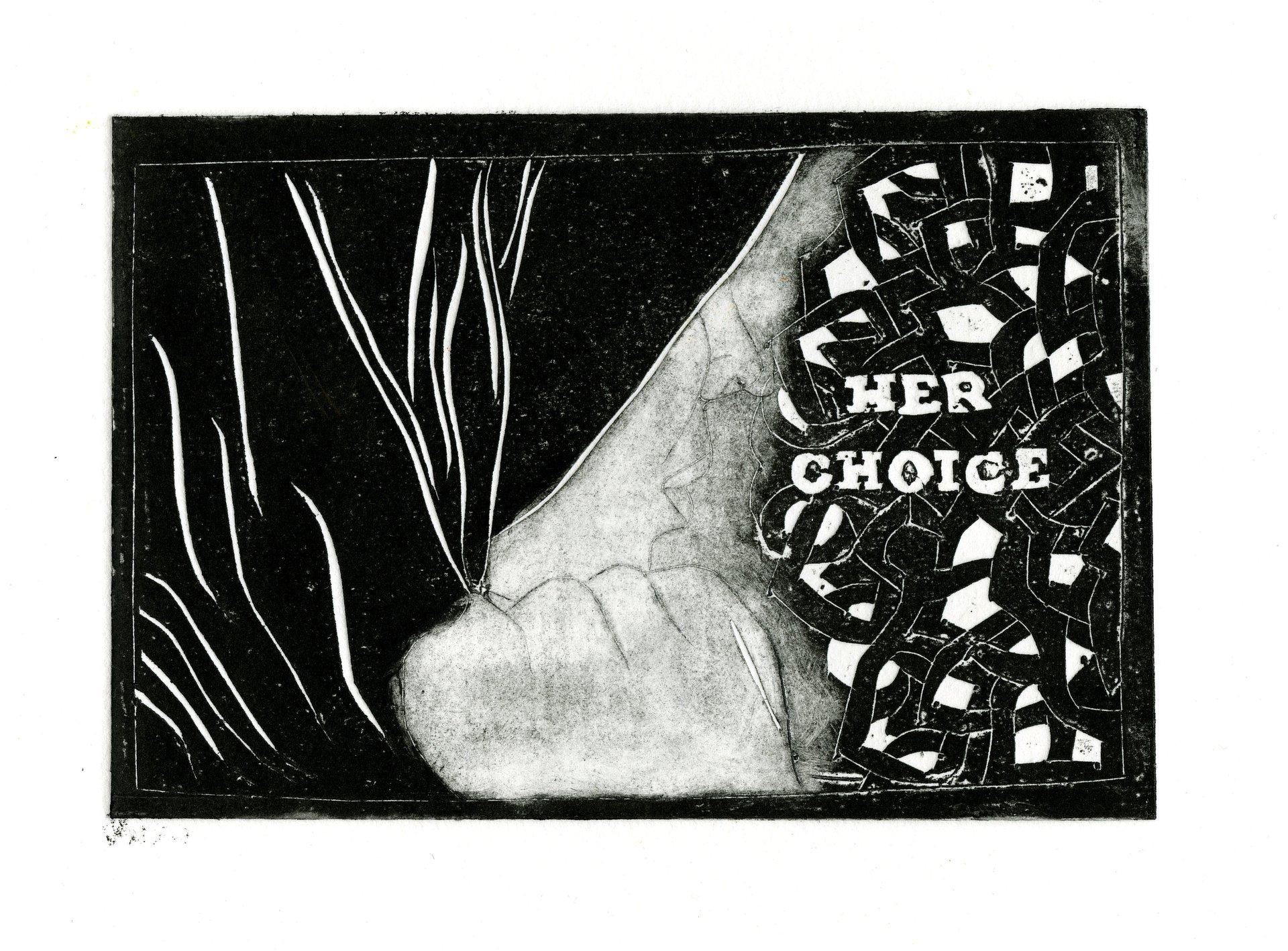 her choice 2011