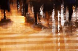 Golden Crosswalk - 121108_4767
