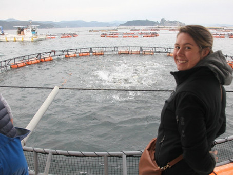 """Young Achiever Leads """"Knowledge Quest"""" to Japan"""