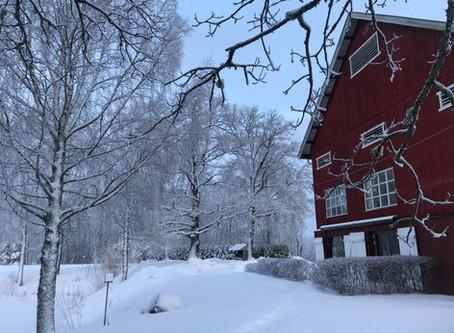 Grønsand Gjestegård skal skape liv og røre på Storsand. Sammen med Eplegården og Sundby gård satser