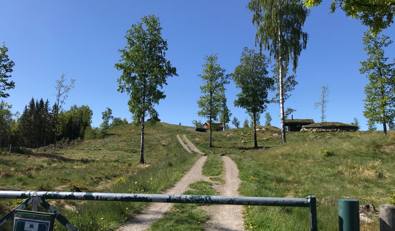 Porten inn til sauebeite og hytta