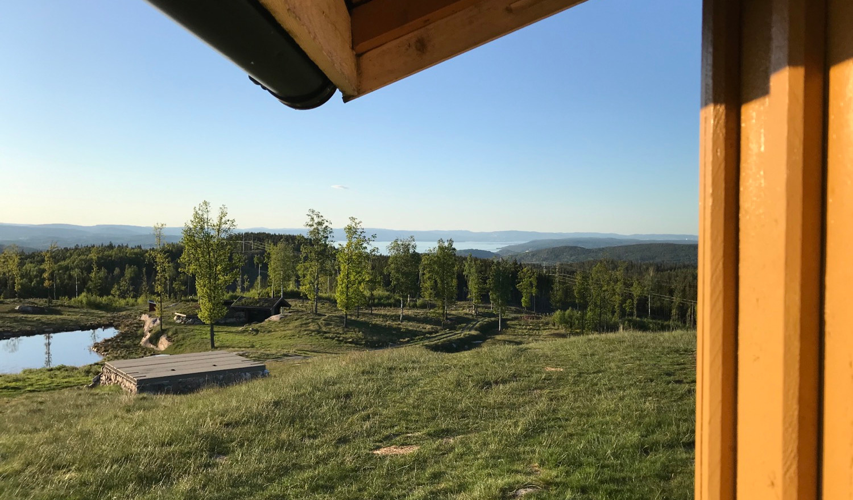 Utsikten ned til gapahuken ved dammen