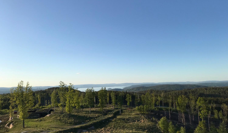 Utsikt mot Oslo
