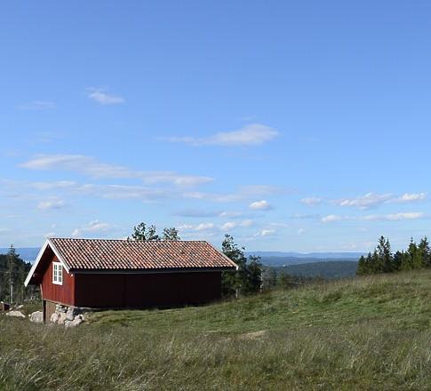 Foto Bjørn Heidenstrøm