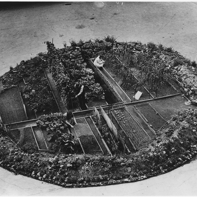 Victory Gardens Supplied Americans With Food, Morale During Two World Wars