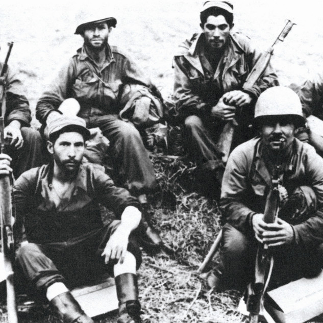 The Borinqueneers: The U.S. Army's Only All-Hispanic Unit