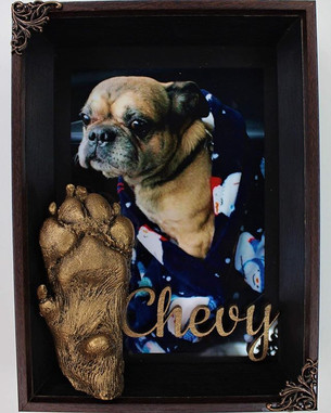 This sweetheart is Chevy the pug. Sadly