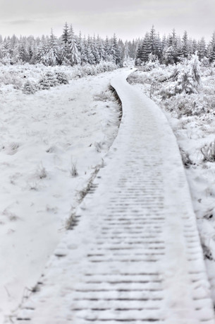 neige ardennes
