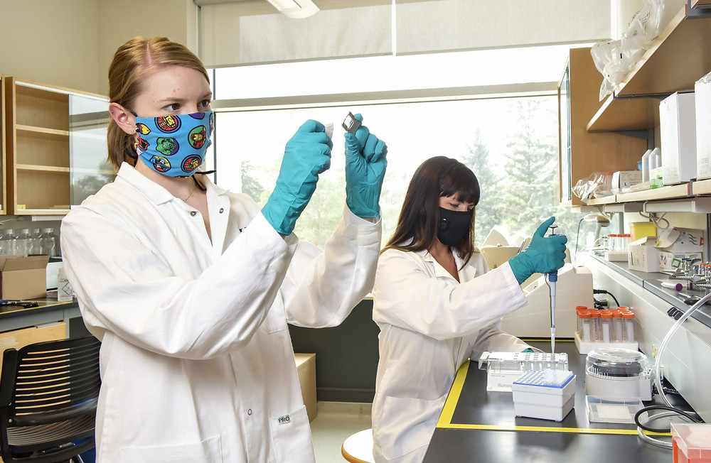 Two people working in a research lab