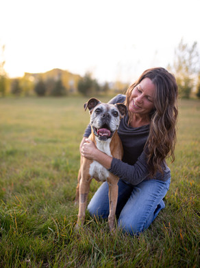 Online therapy dog program to continue this fall following positive survey results