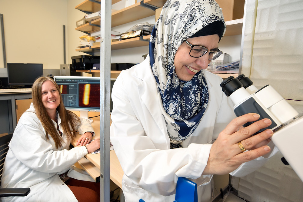 two women scientists in a lab