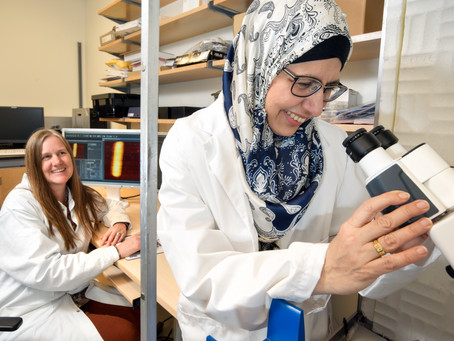 Finding New Ways to Prevent and Treat Fungal Infections