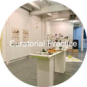 curatorial practice.png