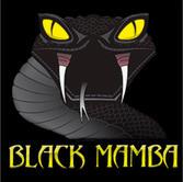 black mamba2.jpg