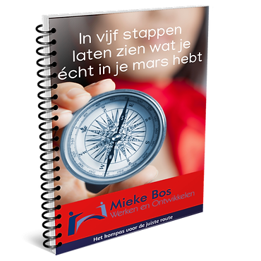 bookcover.stappenplan.png