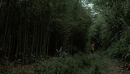 Bamboo Bike2.jpg