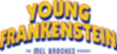 young frankenstein Final.jpg