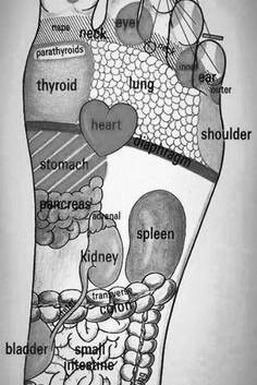Reflexology Foot Mapping