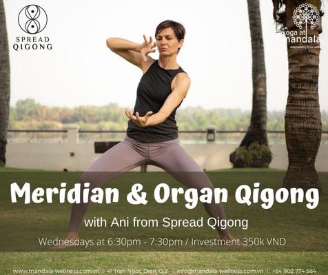 Meridian & Organ Qigong