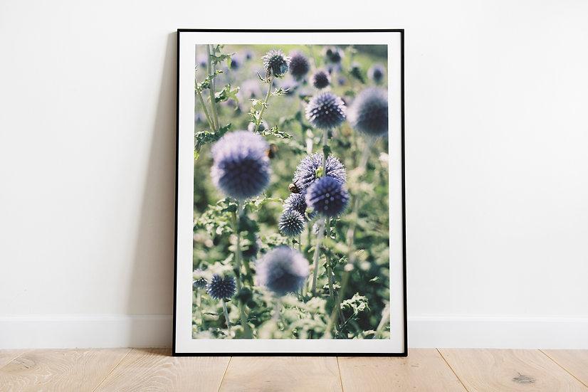 Blue Floralty   Part 1