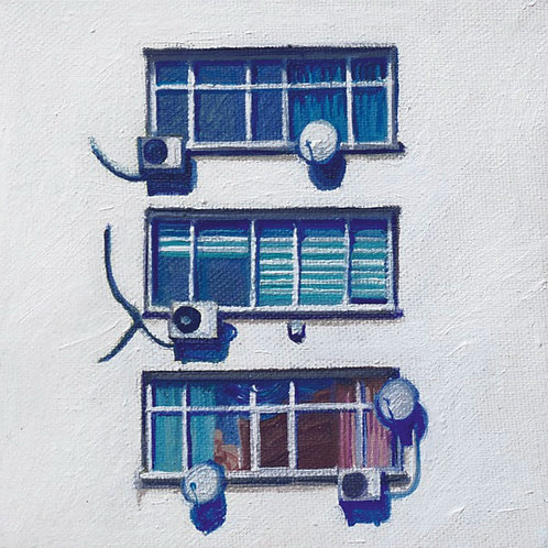 """""""Windows"""" 2020 Setenay Alpsoy"""