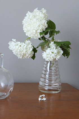 Anna Purna Mood - bouteilles en verre vintage