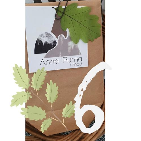 Panier d'Anna N°6