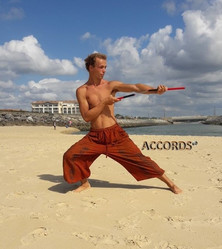 Guillaume Martial Art