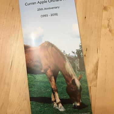 Curran Bronze Horse Fundrasing Project