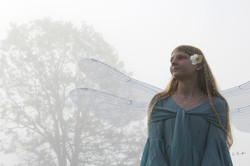 Fairy Fog