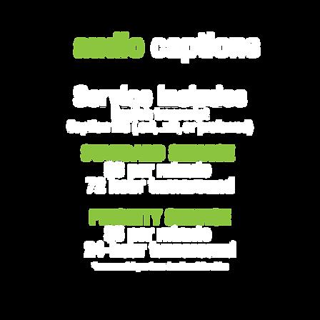 audiocaptionprices.png
