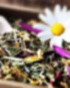Phytotherapie Baden, Heipflanzenkund Baden, Naturheilkunde Baden, Naturheilkunde, Naturmedizin, Naturheilraxis, Naturheilpraxis Baden, Phytotherapeutische Beratung