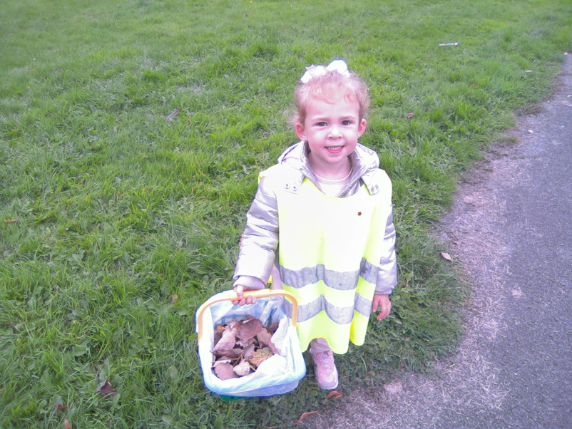 Day Trip to the local park, collecting leaves.