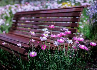 Sit Awhile