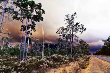 Smokey Day - Fire & Rain Series 2 of 4