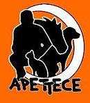 LOGO APETTECE.jpg