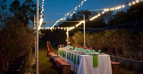 Farm-to-Table-Dinner-Bradenton-e15835135