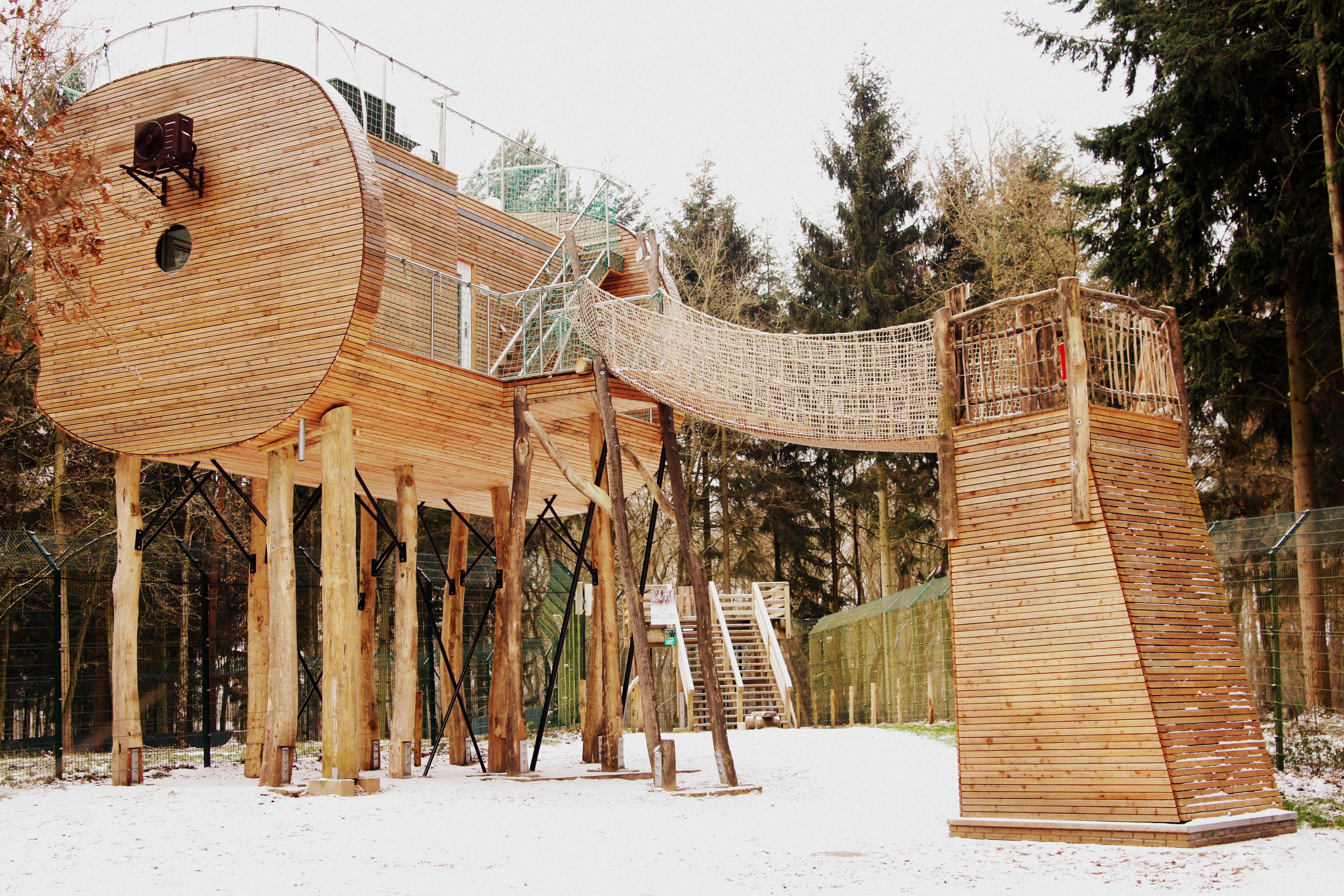 Baumhaus 2
