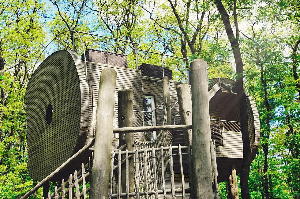 Tree Inn - Das Baumhaushotel