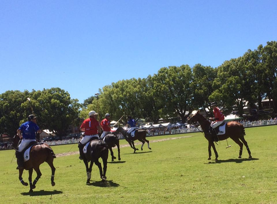 The Polo Players