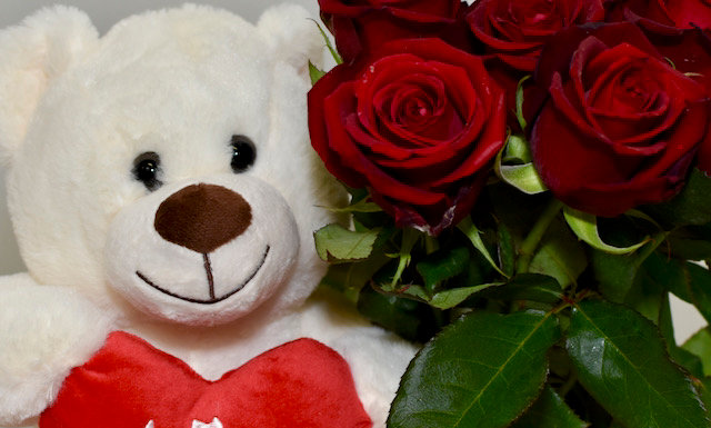 Small white bear and six red roses