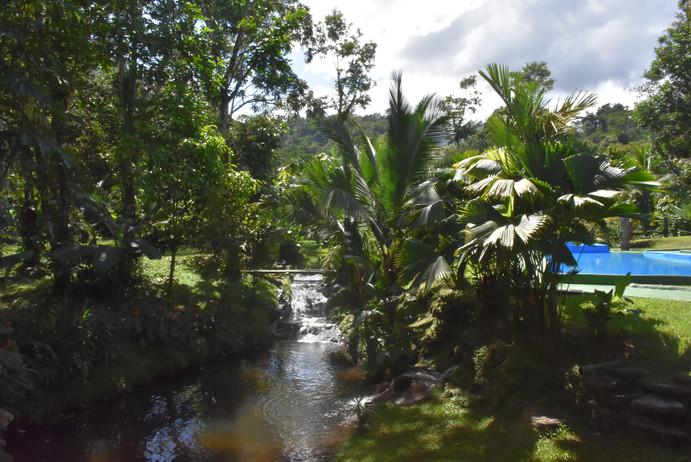 La Fortuna Rainforest House